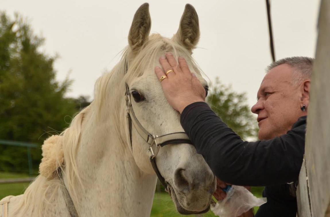 Bioterapija za živali